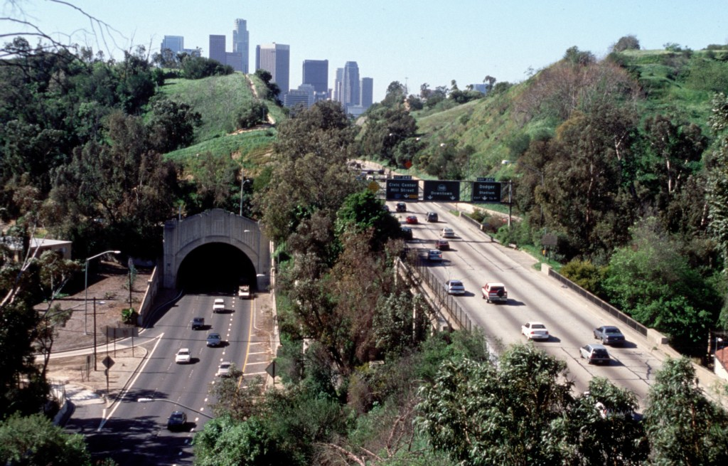 Elysian Park, Central Los Angeles, California